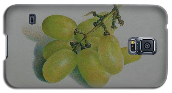 Green Grapes Galaxy S5 Case by Pamela Clements