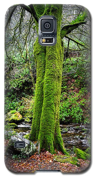 Green Green Moss Galaxy S5 Case