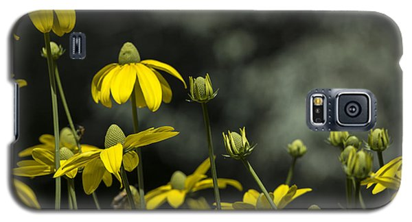 Green Headed Coneflower Galaxy S5 Case