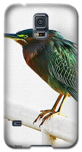 Green Heron In Scottsdale Galaxy S5 Case