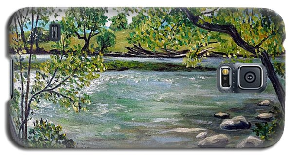 Green Hill Park On The Roanoke River Galaxy S5 Case by Julie Brugh Riffey