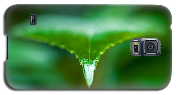 Galaxy S5 Case featuring the photograph Green Leaf by Todd Soderstrom