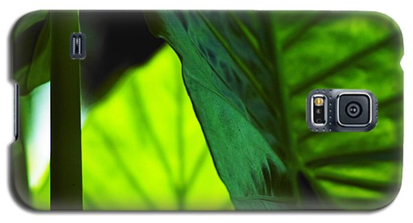 Galaxy S5 Case featuring the photograph Green Leaf Trilogy I by Silke Brubaker