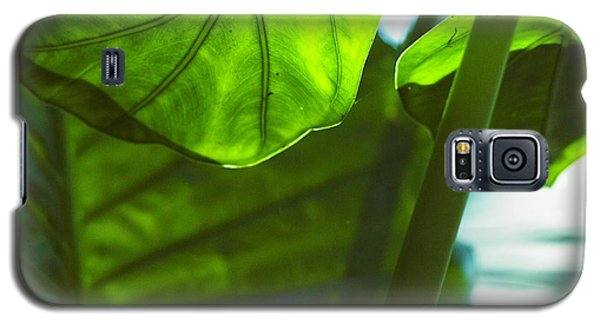 Galaxy S5 Case featuring the photograph Green Leaf Trilogy IIi by Silke Brubaker