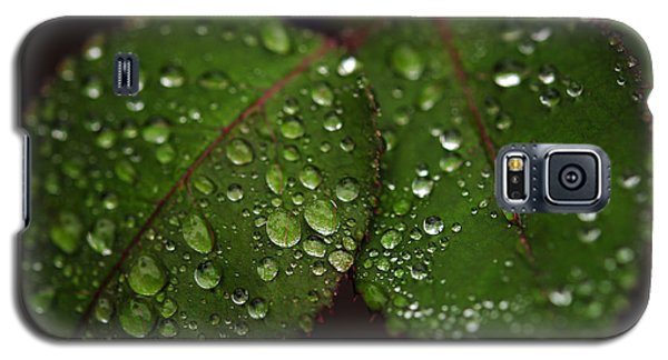 Green Leaves  Galaxy S5 Case