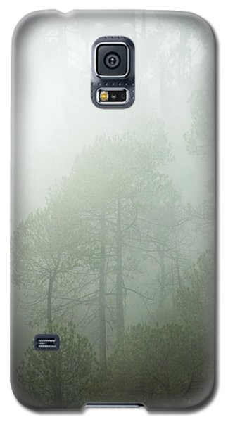 Green Mist Galaxy S5 Case