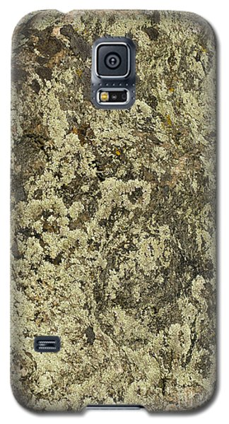 Galaxy S5 Case featuring the photograph Green Moss by Les Palenik