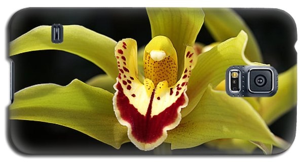 Green Orchid Flower Galaxy S5 Case