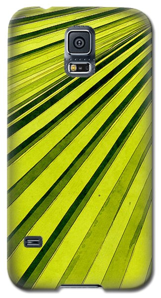 Green Palm Frond Galaxy S5 Case by Phil Perkins
