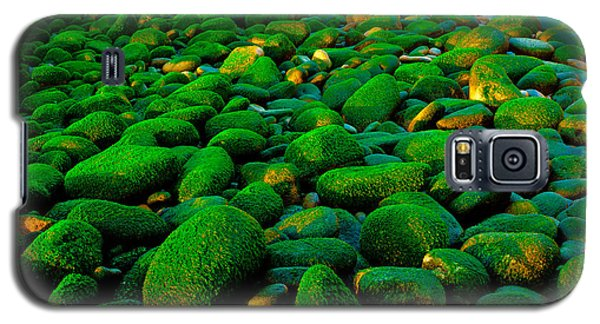 Galaxy S5 Case featuring the photograph Green Rock by Edgar Laureano