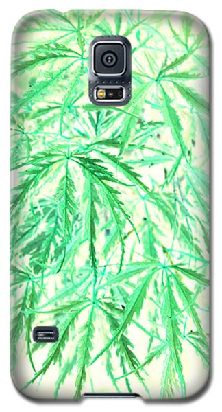 Galaxy S5 Case featuring the photograph Green Splender by Jamie Lynn