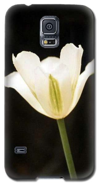 Green Tulip Galaxy S5 Case