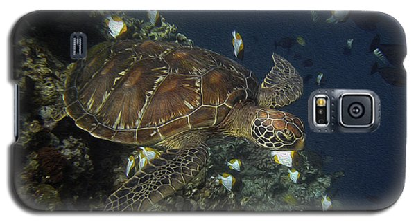 Galaxy S5 Case featuring the photograph Hawksbill Turtle by Sergey Lukashin