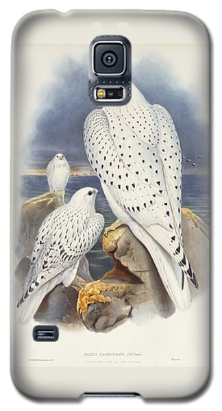 Greenland Falcon Galaxy S5 Case