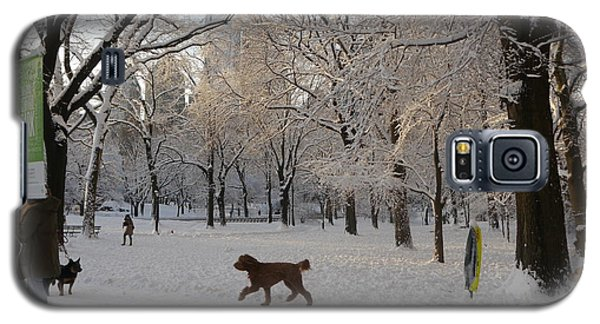 Galaxy S5 Case featuring the photograph Greeting Friends In Central Park by Winifred Butler