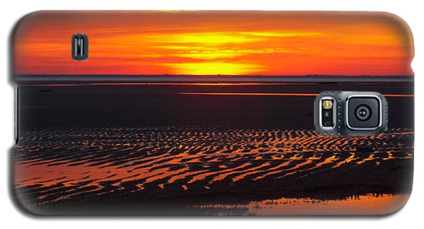 Galaxy S5 Case featuring the photograph Greetings by Dianne Cowen