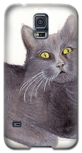 Galaxy S5 Case featuring the painting Grey Cat by Nan Wright