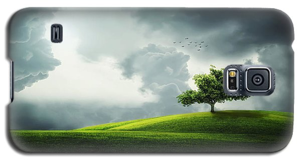 Grey Clouds Over Field With Tree Galaxy S5 Case