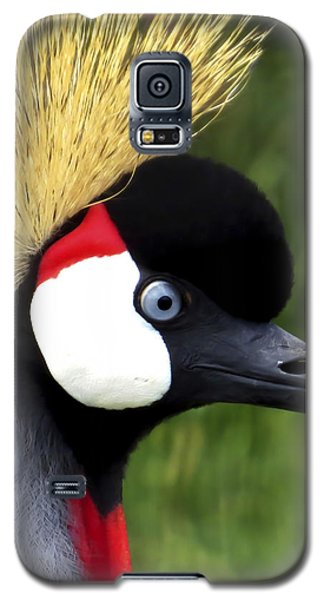 Grey Crowned Crane Galaxy S5 Case by Ron Grafe