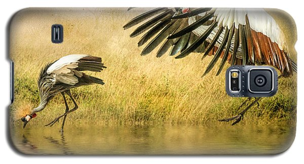Galaxy S5 Case featuring the photograph Grey Crowned Cranes by Brian Tarr