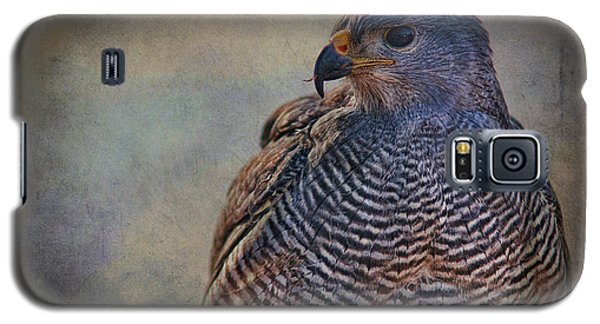 Galaxy S5 Case featuring the photograph Grey Hawk by Barbara Manis