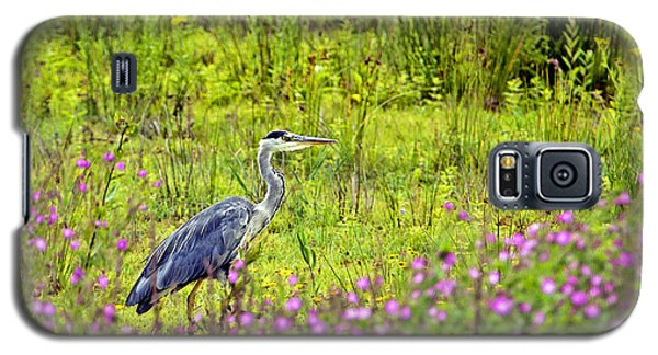 Galaxy S5 Case featuring the photograph Grey Heron Stalking In Margins. by Paul Scoullar