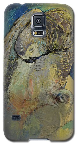 Macaw Galaxy S5 Case - Grey Parrot by Michael Creese