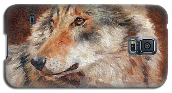 Grey Wolf Portrait Galaxy S5 Case
