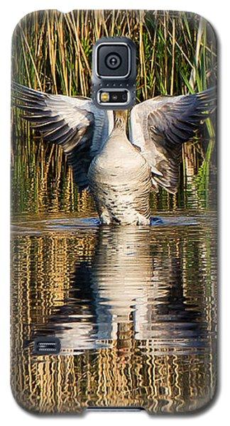 Greylag Goose Family Galaxy S5 Case