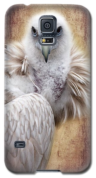Griffon Vulture Galaxy S5 Case by Barbara Orenya