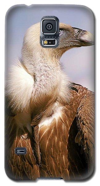 Griffon Vulture (gyps Fulvus) Galaxy S5 Case