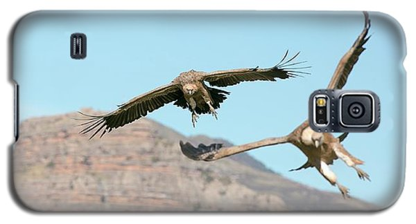 Griffon Vultures Flying Galaxy S5 Case