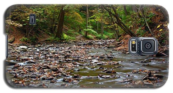 Creek Walk Galaxy S5 Case