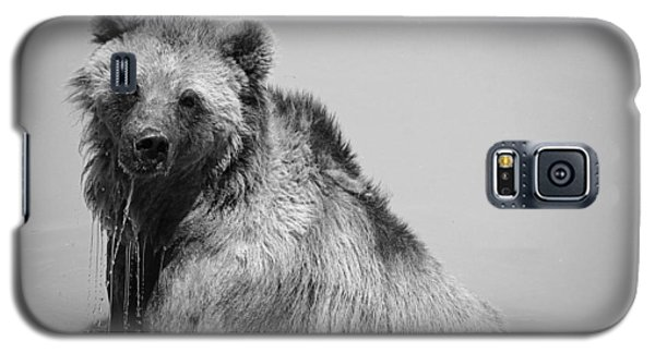 Galaxy S5 Case featuring the photograph Grizzly Bear Bath Time by Karen Shackles