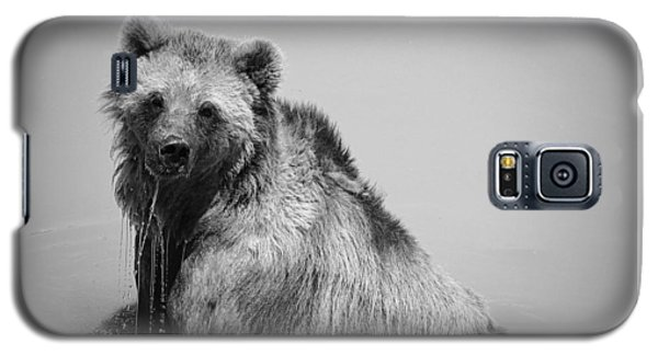 Grizzly Bear Bath Time Galaxy S5 Case by Karen Shackles