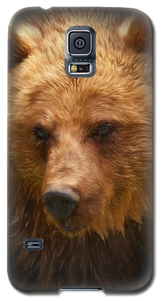 Grizzly Bear Galaxy S5 Case by Ian Merton