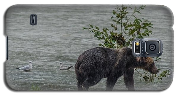 Grizzly Bear Late September 5 Galaxy S5 Case