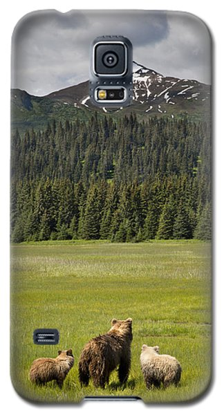Grizzly Bear Mother And Cubs In Meadow Galaxy S5 Case