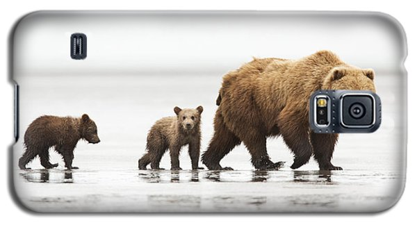 Grizzly Bear Mother And Cubs Lake Clark Galaxy S5 Case