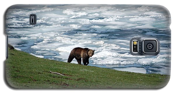 Galaxy S5 Case featuring the photograph Grizzly Bear On Frozen Lake Yellowstone by Shawn O'Brien