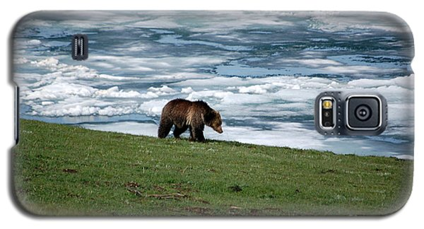 Galaxy S5 Case featuring the photograph Grizzly Bear On The Shoreline Of Frozen Lake Yellowstone by Shawn O'Brien
