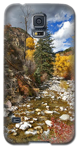 Galaxy S5 Case featuring the photograph Grizzly Creek Cottonwoods Vertical by Jeremy Rhoades