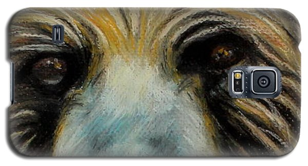 Grizzly Eyes Galaxy S5 Case