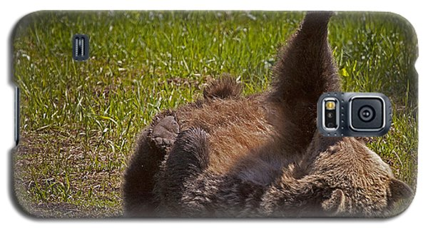 Galaxy S5 Case featuring the photograph Grizzly by J L Woody Wooden
