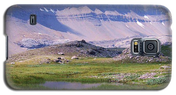 Grizzly Meadows Galaxy S5 Case