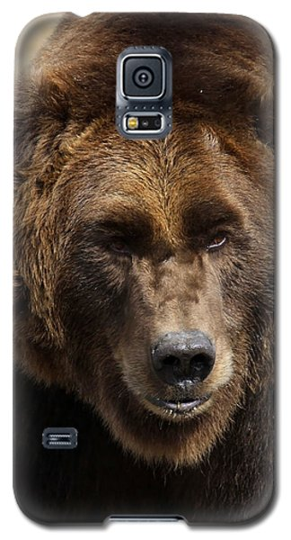 Grizzly Galaxy S5 Case by Steve McKinzie