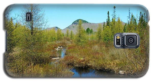 Galaxy S5 Case featuring the photograph Groton State Forest Moose Country by Sherman Perry