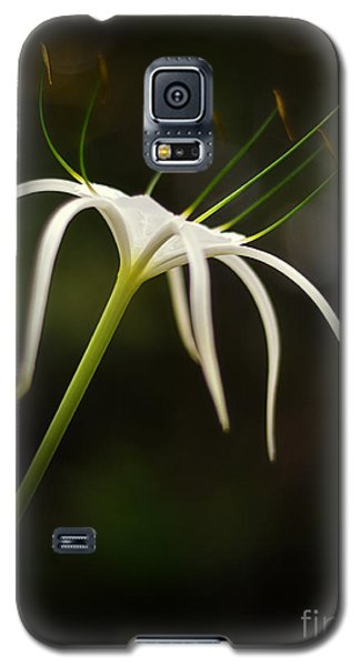White Spider Flower Galaxy S5 Case