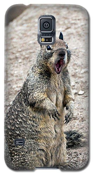 Ground Squirrel Raising A Ruckus Galaxy S5 Case