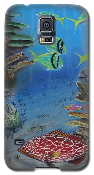 Grouper On The Reef Galaxy S5 Case